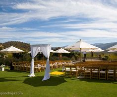 Umbrella's...great idea for an outdoor wedding...less cost than a whole tent.