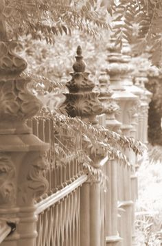Gorgeous contrasts between the old iron garden fence and the foliage inspite of the benign white-on-white.  What a striking winterscape.  It's a print of in front of St. Paul's Church in downtown Concord, NH, being sold on Etsy by artist Pamela Jean Lacasse.  Thanks to Cindy Mount for helping me discover it. -- Eve.