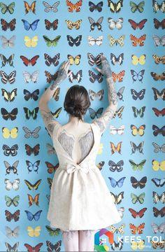 #AnimalPlanet #Butterflys #wallpaper