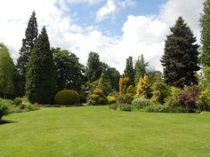 Great Comp Garden in Kent, England - a beautiful garden to visit. http://greatcompgarden.co.uk/