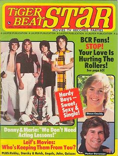 'Tiger Beat' Covers Through The Years