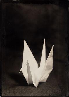 yama-bato:  Tsuyoshi      Title: Paper Crane, 2009http://www.wetplateday.org/