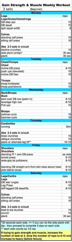 Muscle Building Plan