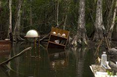 Furniture in Swamp - Dana Levy