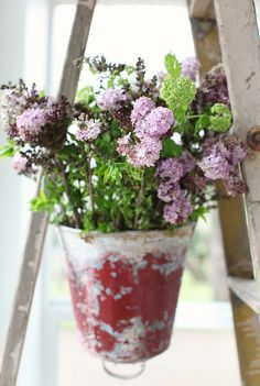 Would love to incorporate some lilac into the wedding flowers...or at least the light purple color!  :)