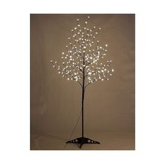 Lightshare 6'  Led Cherry Blossom Tree ($106) ❤ liked on Polyvore featuring home, home decor, holiday decorations, white, white trunk, white home decor, flower stem, lighted home decor and cherry blossom home decor