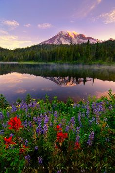 Mt Rainier, Washington State.-- Just came back from Washington, my goodness it's beautiful there!!