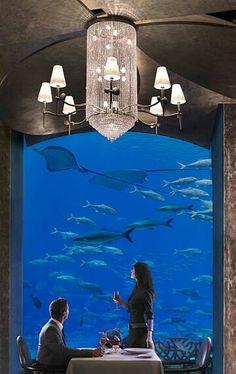 Wow...Dining area in an underwater Hotel Dubai-  BεauԵίʄuɭ ♡✤LadyLuxury✤.