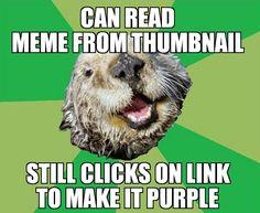OCD Otter, purple links