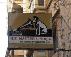 Familia Basset Hound: Cinco cães que fizeram a história de cinco grandes...