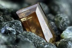 Anatase  Griesferner glacier, Vizze Valley (Pfitsch Valley), Bolzano Province (South Tyrol), Trentino-Alto Adige, Italy   2.17 mm brown-yellow Anatase crystal. Collection & Photo Matteo Chinellato