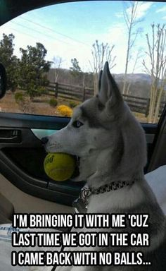 I'm bringing it with me 'cuz last time we got in the car I cam back with no balls . . .
