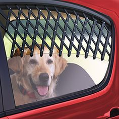 Make one special photo charms for your pets, 100% compatible with your Pandora bracelets. Car window pet gate