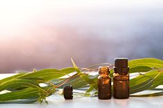 How to Create a Signature Scent (And Why it Should Include Vetiver Essential Oil)
