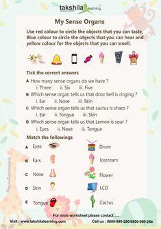 db3103ff156a123e87e2c0cc49b11e9b Sample English Worksheet For Kindergarten on fun phonics, double ten frame, free printable 5 senses, my house, winter math, letter review, consonant blends,