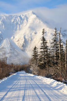 12 Picturesque Towns That Prove Alaska Is The Ultimate Winter Wonderland State - Adriana Tom Marcum - Nature travel Winter Photography, Nature Photography, Winter Szenen, Alaska Winter, Alaska Travel, Alaska Usa, Seward Alaska, Photos Voyages, Snow Scenes