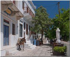 Naxos - Apiranthos