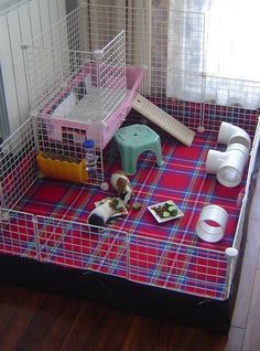 Pic-nic rug flooring - Guinea Pig Cage Photos