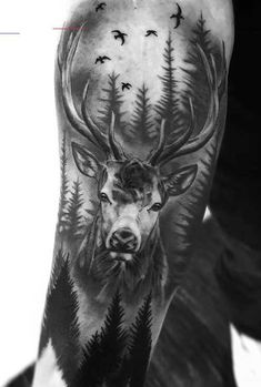 Tattoo sleeve designs & ideas are widely used by both women and men. If you're looking for the best stag tattoos, you'll love this gallery of sleeve tattoo designs. Forest Tattoo Sleeve, Animal Sleeve Tattoo, Nature Tattoo Sleeve, Forest Tattoos, Best Sleeve Tattoos, Nature Tattoos, Deer Hunting Tattoos, Deer Skull Tattoos, Deer Tattoo
