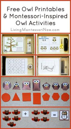 Montessori-Inspired Owl Activities & Printables (free; from Pre-K & K Sharing)