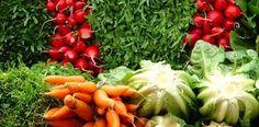 Paleo Diet Food List laceyvander heidikkn healthy-diet healthy-food