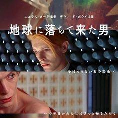 2016年7月16日(土) ・ 地球に落ちて来た男 ・ デヴィッド・ボウイ初主演作、待望の劇場公開。今日(7/16)からです。 美しく悲しさを帯びた宇宙人役、この当時のボウイにはぴったりですね。撮影当時は薬物の影響により、自分が何をやっているかわかっていなかったともインタビューで語ったそう。 ちなみに、監督は「華氏451」の撮影監督のニコラス・ローグ。 ・ 今回の上映に合わせたパンフレットが販売されているのが嬉しいです。これから観る予定の方には購入をおすすめします。 ・ 東京はユーロスペース、大阪はシネマート心斎橋、神戸は神戸アートビレッジセンター、名古屋は名古屋シネマテーク、以降、各地で上映予定。 シネマート心斎橋では、写真家・鋤田正義さんによるボウイの写真が展示されています。 ・ #地球に落ちて来た男 #TheManWhoFeltToEarth #デヴィッドボウイ #DavidBowie #トーマスジェロームニュートン #ニコラスローグ #NicolasRoeg #華氏451 #映画 #movie #映画館 #シネマート心斎橋