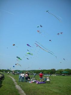 Newport, RI. Breton Point State Park always make think of kites
