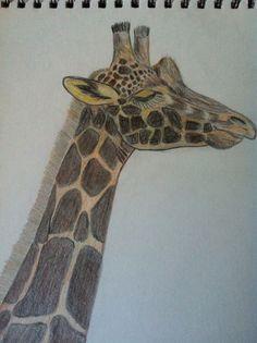My drawing of a giraffe!
