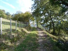 Vers Barcus  (montagne basque).