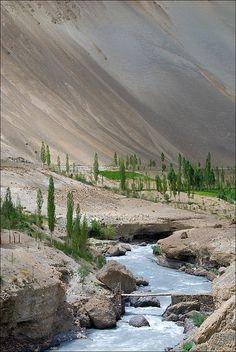 India. Ladakh's Rural Beauty