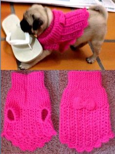 knitting pattern queries knitting patterns of two colours knitting patterns for linen yarn Crochet Dog Clothes, Crochet Dog Sweater, Dog Sweater Pattern, Dog Pattern, Pet Clothes, Baby Knitting Patterns, Chat Crochet, Crochet Baby, Dog Cat