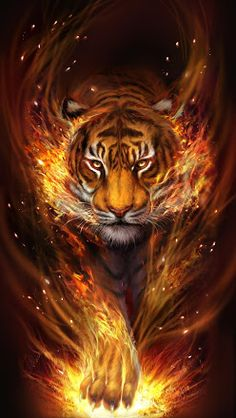 Wild Animal Wallpaper, Tiger Wallpaper, Lion Images, Tiger Images, Big Cats Art, Cat Art, Majestic Animals, Animals Beautiful, Tiger Spirit Animal
