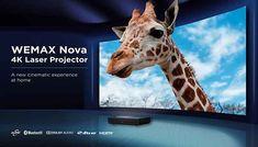 Projector Reviews, Specs, Beast, Nova