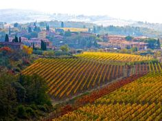 One of my favorite places to be- the food, the wine, the scenery...mmm!