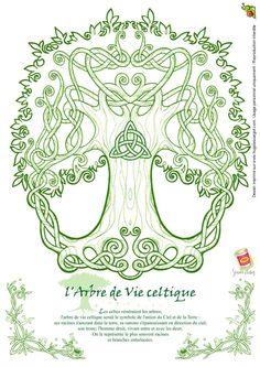 Arbol celta. El Elemento Madera Grande, representada en los árboles nos permite activar la Unión familiar, laboral y sistémica. Fortalece los Lazos de integración