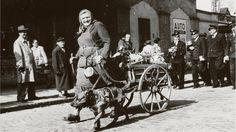 """""""Marktfahrerin Frau Forstner, um 1935"""""""