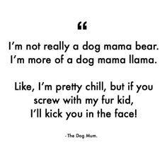 I'm not really a dog mama bear. I'm more of a dog mama lama. Like, I'm pretty chill, but if you screw with my fur kid, I'll kick you in the face! I Love Dogs, Puppy Love, Baby Momma, Puppies And Kitties, Crazy Dog, Dog Memes, Dog Quotes, Happy Thoughts, Dog Friends
