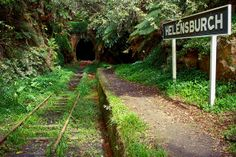 Nestled amid lush plant life that overhangs a deep cutting in the Illawarra region of New South Wales, a railway track runs past a neglected platform into the mouth of an abandoned tunnel. Derelict Places, Abandoned Places, Abandoned Train Station, Holland, Old Trains, Ferrat, Abandoned Buildings, Abandoned Cars, Train Tracks