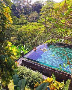 Maya ubud resort and spa Bali