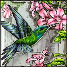 Passionate Paper Creations: Hummingbird and Flowers - Stampendous. Flowers R81, 34, 56 Leaves YG 03, 17, 67 BIRD – BG 53, 49, 57  BV 23, 25, 29, YG 03, 17, 67