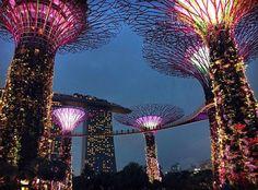 Garden Bay the Bay , Singapore