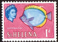 St Helena 1961 Cunning Fish SG 176 Fine Mint SG 176 Scott 159 Condition Fine LMM Only one post charge applied on multipule purchases Details Fish N B Crown Colony, Buy Stamps, St Helena, King George, Mail Art, Stamp Collecting, World History, Elizabeth Ii, Marine Life