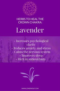 Lavender is a heavenly way to heal the CROWN CHAKRA. Click to get the tea ...