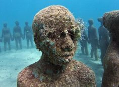 Underwater Sculpture, Grenada Photograph by Jason deCaires Taylor, My Shot Underwater sculpture park in Grenada, West Indies (This photo and caption were submitted to My Shot. Under The Water, Under The Sea, Underwater Sculpture, Underwater Photos, Underwater Life, Underwater Photography, Sculpture Museum, Lion Sculpture, Sculpture Garden