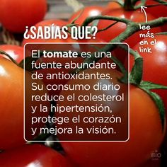 """Tomatoes are an abundant source of antioxidants.  Its daily intake reduces cholesterol and hypertension, protects the heart, and improves eyesight."""