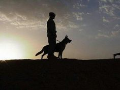 "What a stunning pic of K9 and handler.... ""K9 Leads the WAY..."" Thanks to K9 Hero MWD Ron and his Hero handler. Bless our heroes, 2- and 4-legged... stay safe! Love our service and working dogs!"