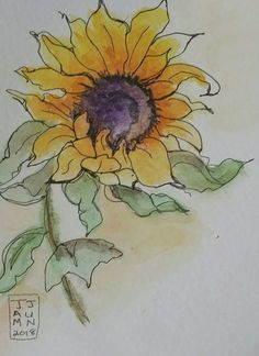 Watervolour and pen. Watervolour and pen. Sunflower Drawing, Watercolor Sunflower, Pen And Watercolor, Watercolor Flowers, Watercolor Paintings, Watercolors, Watercolor Projects, Watercolor Techniques, Pen And Wash