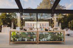 How amazing are the Glass Bar Structures from Scape Events? The addition of potted plants works beautifully and together with the outdoor surroundings seen from outside the Glass Marquee structure and wedding venue. Coordinated by Anne Mann Celebrates. Photographs by Gavin Casey Wedding Photography. Venue: Muratie Canvas Wedding Venue in Stellenbosch.  Glass Bar, Potted Plants, Garden Wedding, Real Weddings, Wedding Venues, Photographs, Wedding Inspiration, Wedding Photography, Events