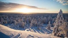 Image result for rovaniemi