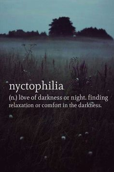 Nyctophiliac here. I like the darkness. The words, the lack of words, the lighting, the lack of lighting. I can sit in moonlight and love it. So not complete darkness. Just dark dark. The Words, Cool Words, Dark Words, Words Quotes, Sayings, Rain Quotes, Text Quotes, Random Quotes, Song Quotes